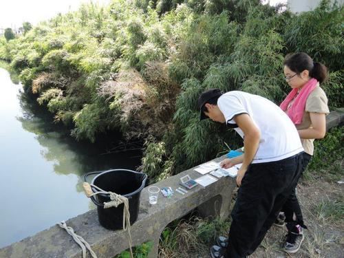 芝川 水質.jpg